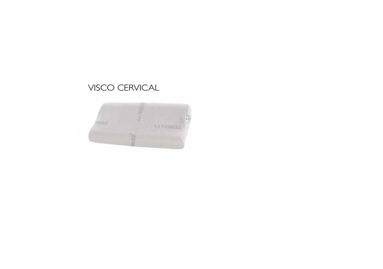 VISCO CERVICAL