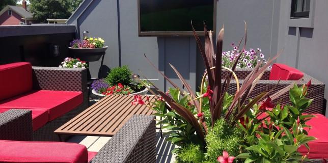 Pon a punto tu terraza para las altas temperaturas 4