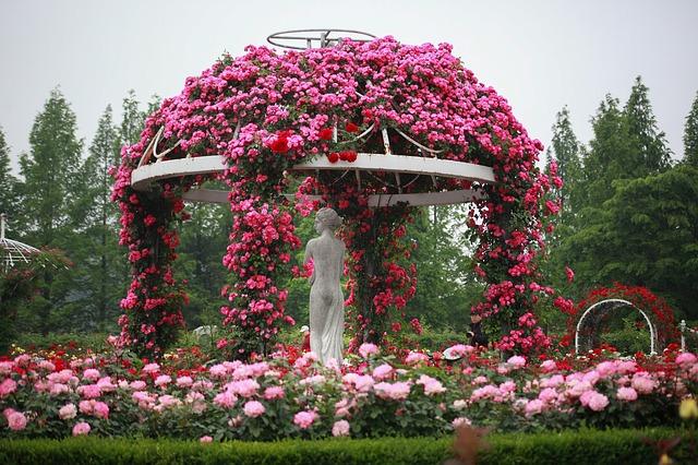 flores de jardín rústico